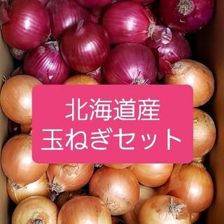 北海道産赤玉ねぎ【アーリーレッド】+玉ねぎセット各5キロ 約10キロ 訳あり品(野菜)