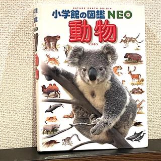 小学館 - NEO 動物 図鑑 どうぶつずかん