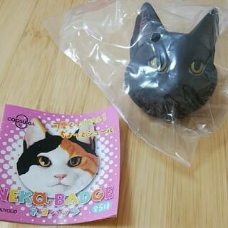 カイヨウドウ(海洋堂)のネコバッジ 海洋堂 ねこ 猫 バッチ 松村しのぶ 黒 ガチャ(キャラクターグッズ)