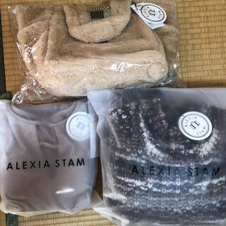 アリシアスタン(ALEXIA STAM)の新品タグ付 ALEXIASTAM  3点セット(その他)