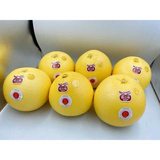 熊本県産 晩白柚 M 6玉 1玉1kg以上(フルーツ)