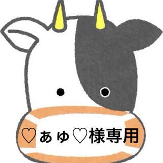 ♡ぁゅ♡様専用(収納/チェスト)