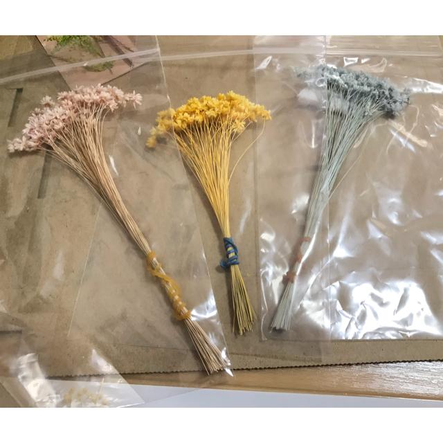 花材 ドライフラワー まとめうり ハンドメイドのフラワー/ガーデン(ドライフラワー)の商品写真