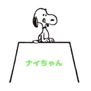 ナイちゃん(その他)