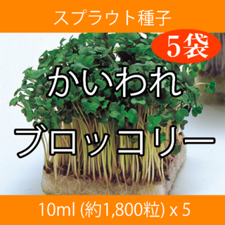 スプラウト種子 S-01 かいわれブロッコリー 10ml x 5袋(野菜)