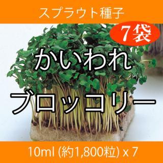 スプラウト種子 S-01 かいわれブロッコリー 10ml x 7袋(野菜)