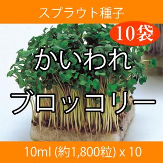 スプラウト種子 S-01 かいわれブロッコリー 10ml x 10袋(野菜)
