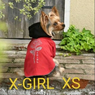 エックスガール(X-girl)の新品 未使用 ドッグウェア X-GIRL エックスガール ローズコーチジャケット(犬)