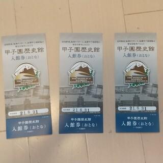 ハンシンタイガース(阪神タイガース)の甲子園歴史館 入館券 大人3枚セット(野球)
