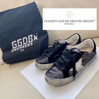 GOLDEN GOOSE - golden goose ゴールデングース☆ローカットスニーカー
