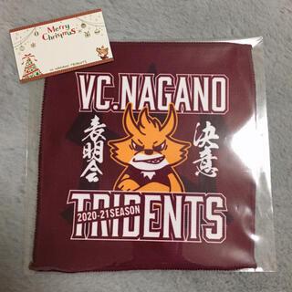 【新品】VC長野 記念品(バレーボール)