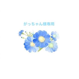 がっちゃん様専用  38(ロングコート)