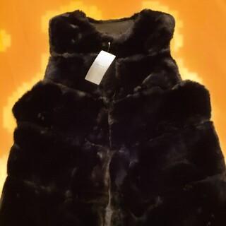 ディーホリック(dholic)のディーホリック♥️新作新品今季秋冬ファーベスト(毛皮/ファーコート)