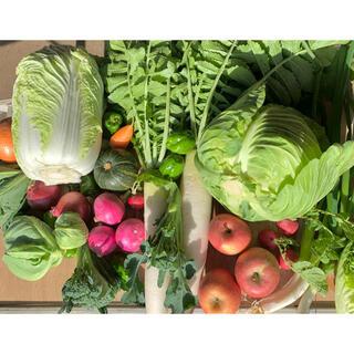 冬野菜と果物(野菜)
