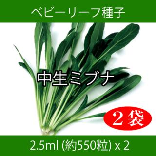 ベビーリーフ種子 B-23 中生ミブナ 2.5ml 約550粒 x 2袋(野菜)