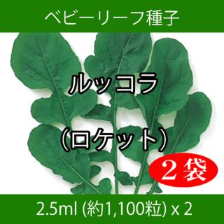 ベビーリーフ種子 B-29 ルッコラ(ロケット)2.5ml約1100粒 x 2袋(野菜)
