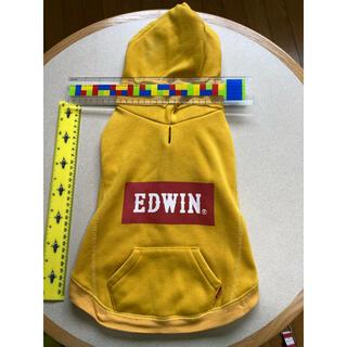 エドウィン(EDWIN)の犬 トレーナー EDWIN(犬)