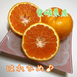 愛媛県産はれひめ家庭用約5kg(フルーツ)