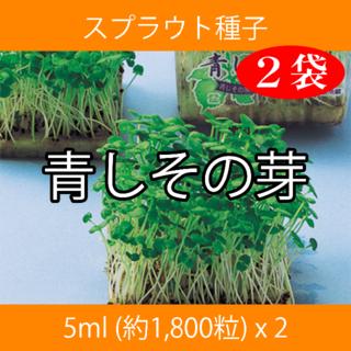 スプラウト種子 S-12 青しその芽 5ml 約1,800粒 x 2袋(野菜)