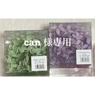can 様専用  アジサイ2色(ドライフラワー)