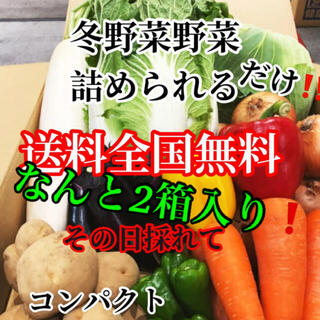 なんと2箱入り❗️農家直送野菜コンパクト入る分だけ詰めます送料無料(野菜)