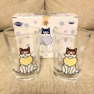 パトラッシュ ペア ミニグラス(グラス/カップ)