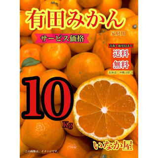 有田みかん 家庭用 セール 特価価格10kg 残り1点(フルーツ)
