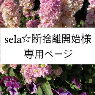 スターバックスコーヒー(Starbucks Coffee)のsela☆断捨離開始様専用♡マグカップ(マグカップ)