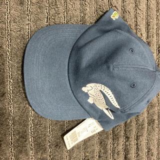 ラコステ(LACOSTE)のキャップ 帽子 ラコステ(キャップ)