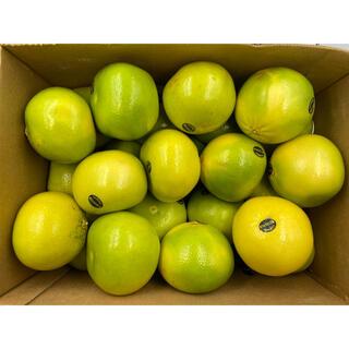 家庭用❗️アメリカ産 メロゴールド33-36玉(フルーツ)