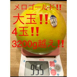 メロゴールド 大玉800g〜900g 4玉 3200g越え(フルーツ)