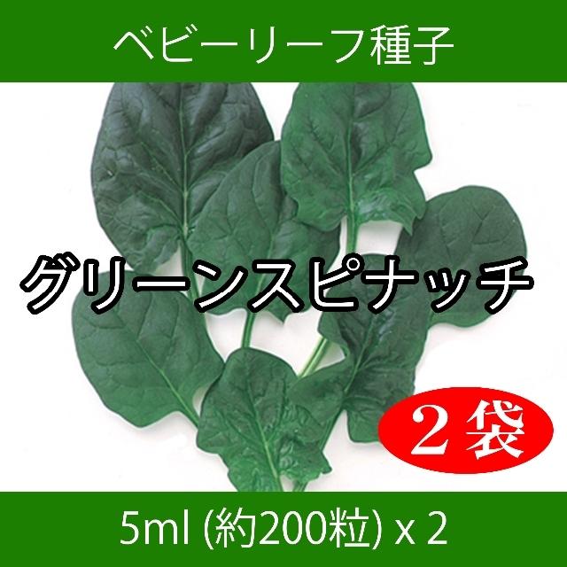 みっちゃんママ様専用 セレクト種子 4袋 食品/飲料/酒の食品(野菜)の商品写真