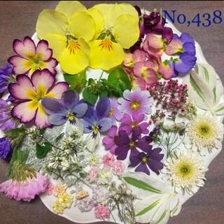 No,438  小花ミックス ドライフラワー素材(ドライフラワー)
