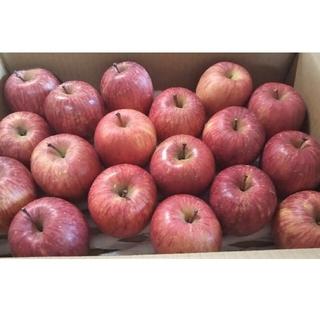 りんご 極小粒 18個入り 秋田県横手市産 品種「ふじ」(フルーツ)