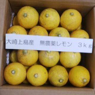 広島県大崎上島無農薬レモン 3kg(フルーツ)
