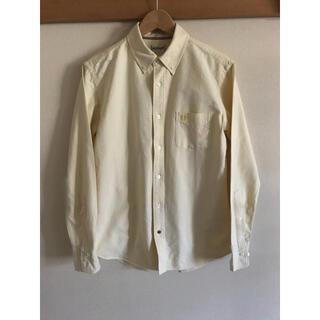McGREGOR - マクレガー OXボタンダウンシャツ Lサイズ イエロー黄 マクレガークラシック