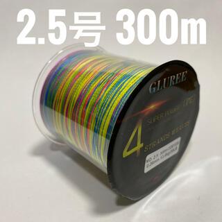 PEライン 2.5号 300m(釣り糸/ライン)