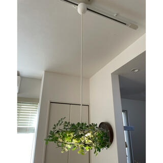 LEDペンダントライト リーフ(天井照明)