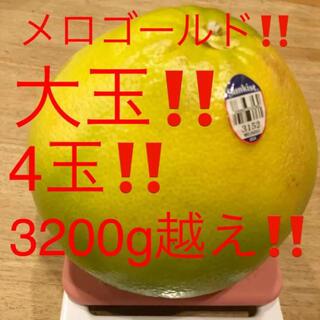 メロゴールド 大玉 800-900g  4玉 3200g越え(フルーツ)
