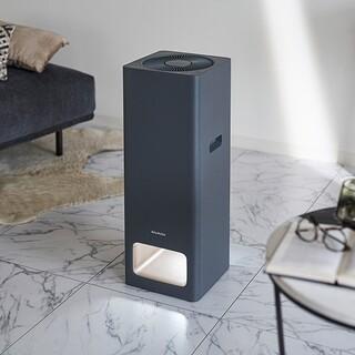 バルミューダ(BALMUDA)の空気清浄機 BALMUDA The Pure A01A (グレー)(空気清浄器)
