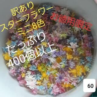 訳あり60スターフラワーミニ8色 400個以上(ドライフラワー)
