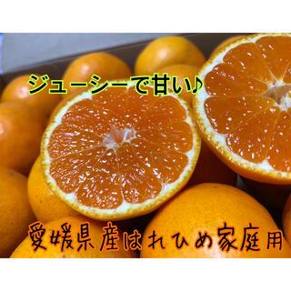 愛媛県産はれひめ家庭用約5kg(小玉多め)(フルーツ)