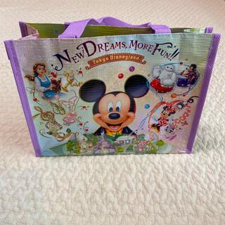 ディズニー(Disney)の未使用 ディズニーバック ランチバック(トートバッグ)