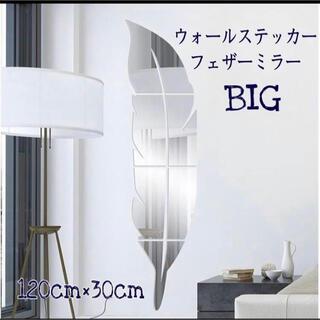フェザーミラー 鏡 2点(壁掛けミラー)