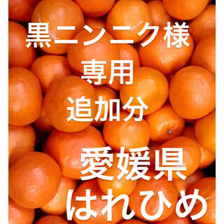 黒ニンニク様 専用(フルーツ)