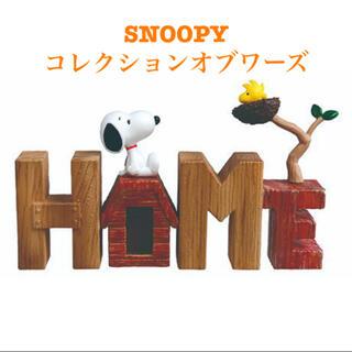 SNOOPY - スヌーピー コレクションオブワーズ