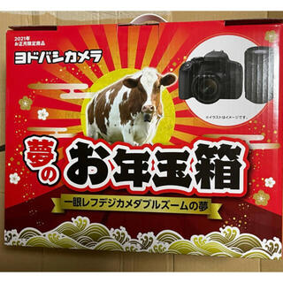 Canon - ヨドバシ福袋  一眼レフデジカメダブルズームの夢 EOS KISS X9i