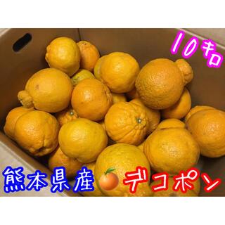 熊本県産 不知火✴︎デコポン 箱込約10㌔(フルーツ)