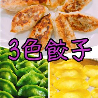 無添加3色餃子 白・緑・黄色 野菜の色 無着色 皮もちもち中ジューシー美味しい(野菜)