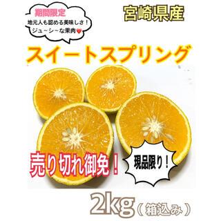 【現品限り!!】マル秘みかん❣️スイートスプリング2㎏(送料込み)/果物 みかん(フルーツ)
